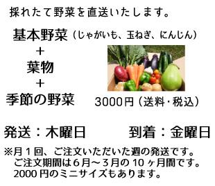 野菜BOX3000の説明