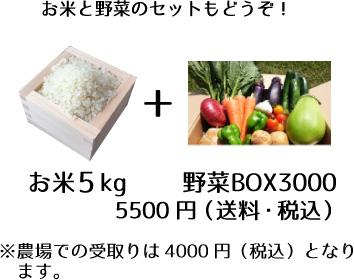 お米と野菜の説明